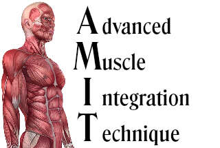 Advanced Muscle Integration Techniqye